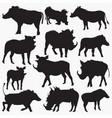 warthog-animal silhouettes vector image vector image