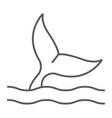 whale tail thin line icon aquatic animal sea life vector image vector image