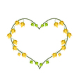 Ylang Ylang Flowers in A Heart Shape vector image vector image