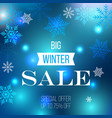 big winter sale poster special offer vector image vector image