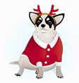 chihuahua is dressed like a deer vector image vector image