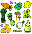 doodle of vegetable style set vector image vector image