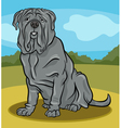 neapolitan mastiff dog cartoon vector image vector image