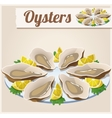 Oysters Detailed Icon vector image vector image