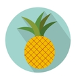 colorful circular shape with pineapple fruit vector image