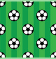 football balls on green grass of soccer field vector image