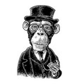 monkey gentleman holding a watch and dressed hat vector image vector image