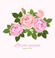 pink and beige roses with green leaves vector image vector image