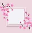 sakura tree flowers around blank square frame vector image vector image