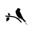 sparrow black vector image vector image