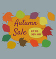 autumn seasonal sale text autumn sale 30 discount vector image vector image