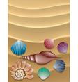 shells on sand vector image vector image