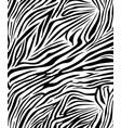 zebra skin texture safari style vector image