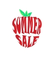Big summer sale label vector image