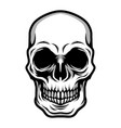 detailed classic skull head black and white vector image vector image
