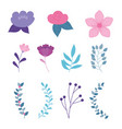flowers branch leaves botanical nature icons vector image