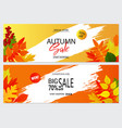set of autumn banners with leaves wallpaper vector image