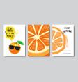 set summer love orange badge isolated typographic vector image