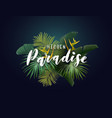 summer tropical design with exotic green vector image