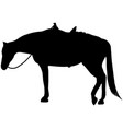 western ranch horse relaxing silhouette vector image vector image