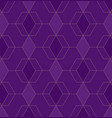 abstract geometric pattern with lines on violet vector image