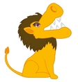 Animal lion on white vector image vector image
