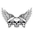 danger skulls vector image vector image