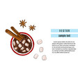 hot chocolate drink with cinnamon and anise vector image