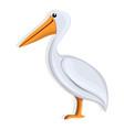 pelican icon cartoon style vector image vector image