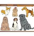 purebred dogs cartoon set vector image vector image
