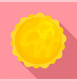 space sun icon flat style vector image vector image