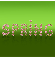 Spring word sakura blossom Japanese cherry tree vector image
