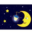 moon flash land vector image
