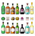 alcohol drinks in a bottle with different vintage vector image vector image