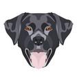 black labrador retriever with smiles vector image vector image