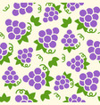 grape seamless pattern for wallpaper or wrapping vector image vector image