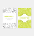 herbs and spices card templates set with natural vector image vector image