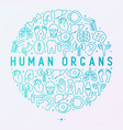human internal organs concept in circle vector image vector image