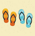 pair of colorful flip-flops on sand vector image