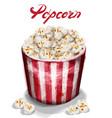 pop corn box watercolor fresh cinema vector image