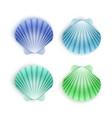 Set scallop seashells seashells cartoon