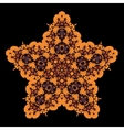 Tribal star on black Ornamental colorful vector image