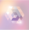 Abstract shiny gexagonal shape vector image vector image