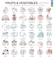 Fruits and vegetables color line outline vector image vector image