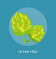 green hop isolated icons vector image