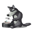 hungry animated grey wolf with fork and empty vector image vector image