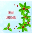 Paper Christmas greeting card with holly vector image vector image