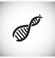 rna dna structure on white background vector image vector image