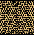 seamless pattern with giraffe skin texture vector image vector image