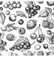 wild berry seamless pattern drawing hand drawn vector image